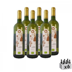 Bergerac, Vin Bio et Nature - Lot de 6x75cl